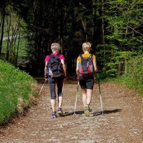 TV Steinach - Nordic Walking
